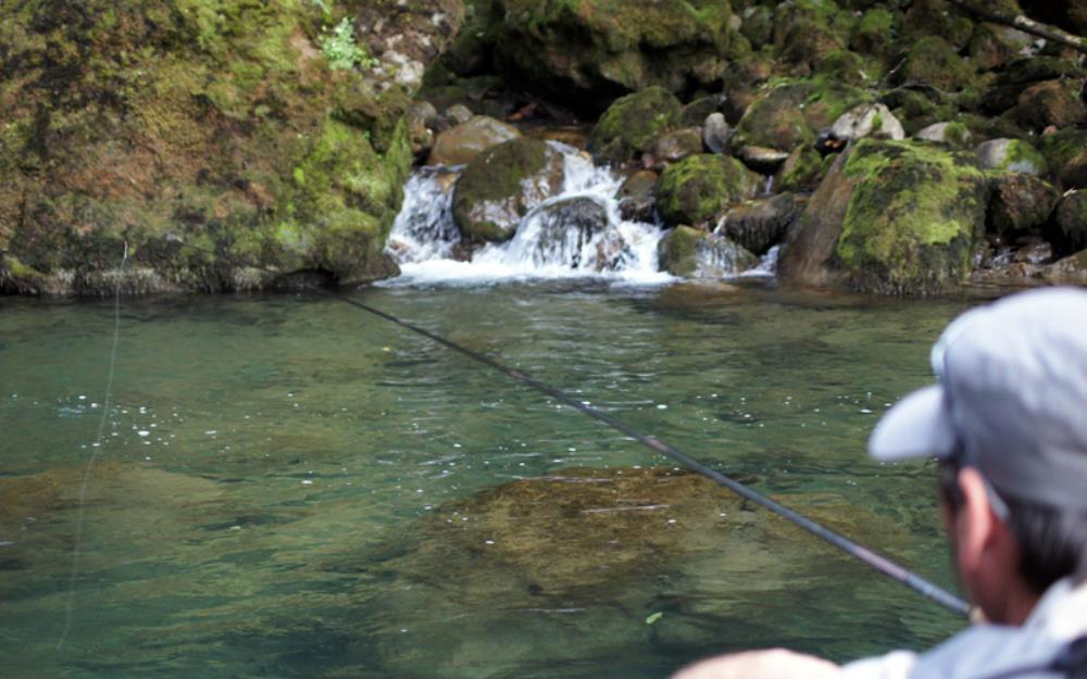 Cours d'eau pêche